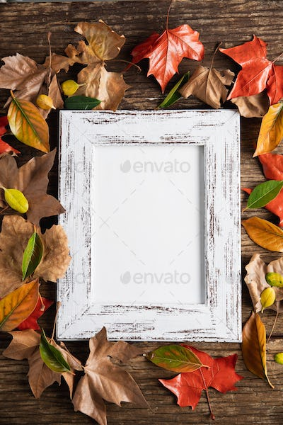Autumn flat lay with photo frame