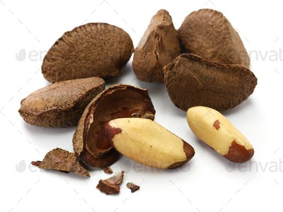brazil nuts, in shell ,and shell removal