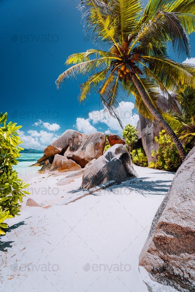 Footpath to tropical beach Anse Source d'Argent between granite rocks and palm trees, La Digue