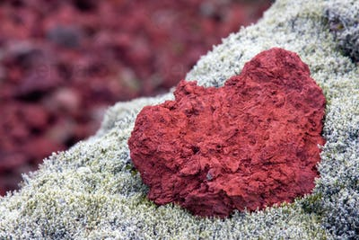 Red Lava And Moss, Iceland