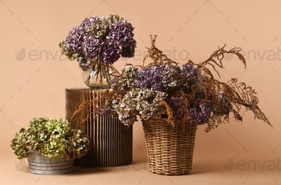 beautiful dried bouquets