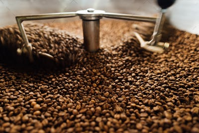 beans in a moving coffee cooling mixer