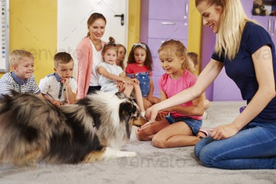 Young woman working with dog during therapy in the preschool