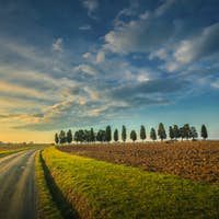 Sunset landscape in Maremma. Rural road and cypress trees. Tuscany, Italy