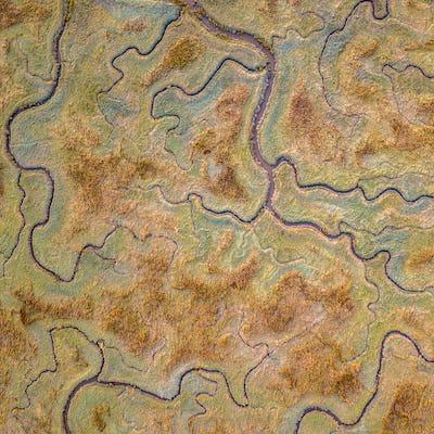 Aerial view of tidal marshland sq