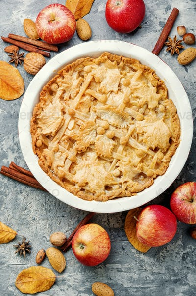 Traditional american apple pie.
