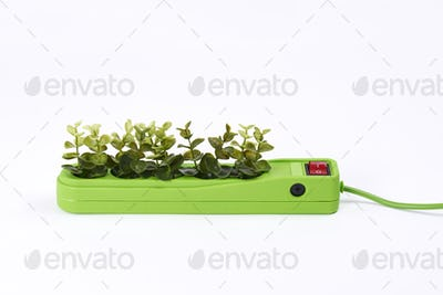 Electric socket with plants on white background