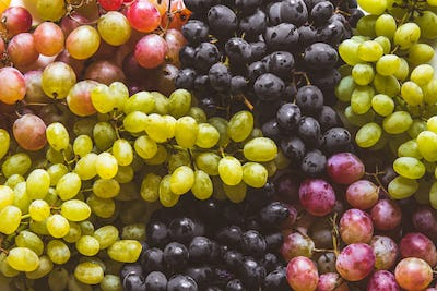 green and red grapes fruits