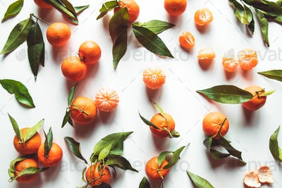 Oranges fruits composition with green leaves and slice on white wooden background, top view