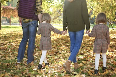 Rear view of family walking in autumn forest