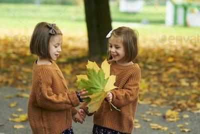 Charming twins picking leafs on the fall season