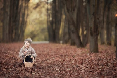Adorable little girl with a basket outdoors at beautiful autumn forest