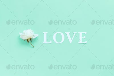 Flower and word LOVE on a light green background