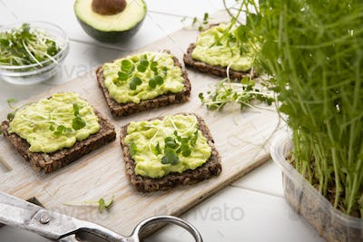 Whole grain toasts with avocado spread and microgreen sprouts