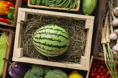 Big organic watermelon in wooden box on counter