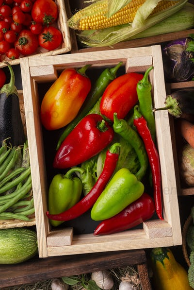 Bright and fresh organic vegetables on counter in wooden boxes