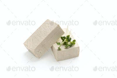 Blocks of Tofu cheese with microgreen leaves
