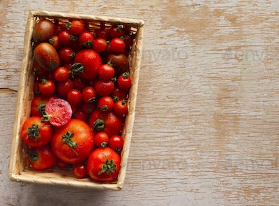 Eco red tomatoes inside wooden box on table