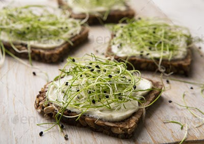 Vegan sandwiches with tofu cheese and fresh microgreen