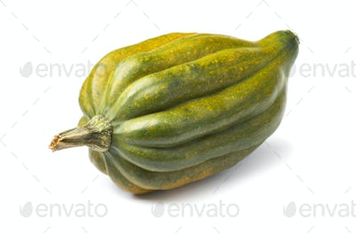Fresh acorn squash close up