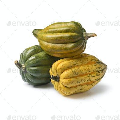 Fresh whole acorn squashes close up