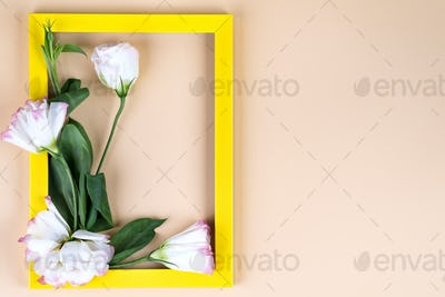 Empty yellow frame and flowers eustoma on beige paper background with copy space. Holiday concept