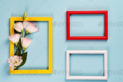 Empty yellow frame with flowers eustoma on blue paper background with copy space. Flat lay. Love