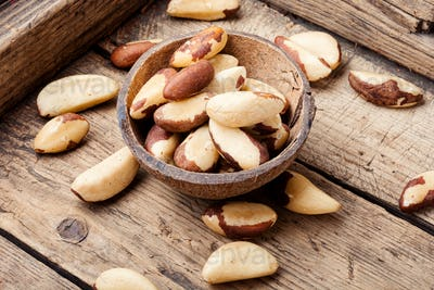 Brazil nut or Bertholletia