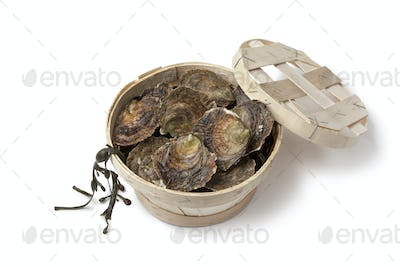 Fresh European flat oysters in a basket