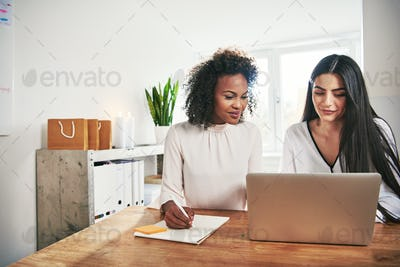 Two successful women running an ebusiness together