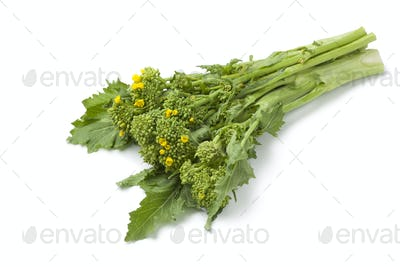 Bunch of fresh picked broccolini