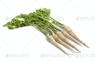 Fresh Root Parsley