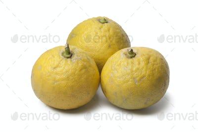 Bergamot oranges