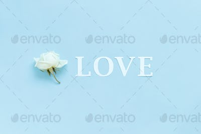 Word LOVE and flower on a light blue background