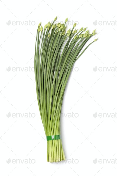 Bunch of garlic chives