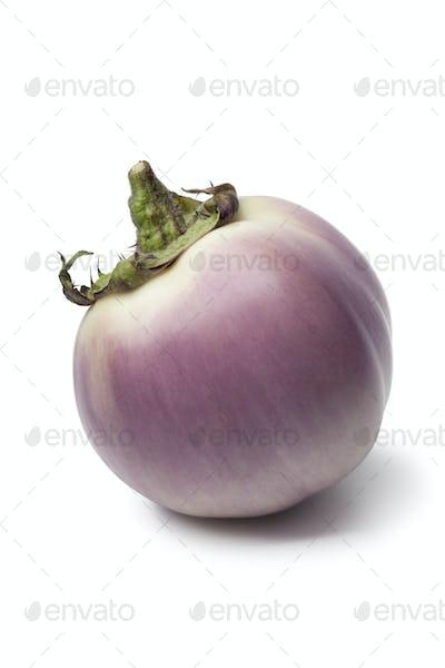Purpura eggplant