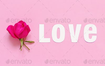 Flower and word LOVE on a light pink background