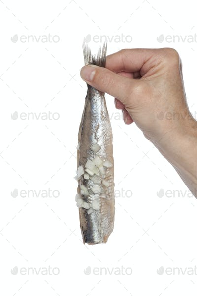 Hand holding a fresh herring with onions