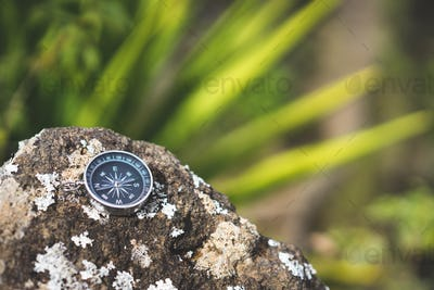 Navigation concept - Analogical compass laying on the rocky stone. Blurred agave plant leaves in