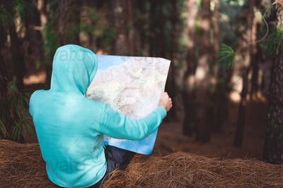Rear view of traveler in blue hoodie holding map while resting in pine forest