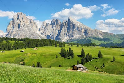 Sassolungo and Sassopiatto mountains from Alpe di Siusi or Seiser Alm, Dolomites Alps , Italy