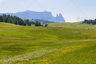 Mountain views from Alpe di Siusi or Seiser Alm, Dolomites Alps , Italy