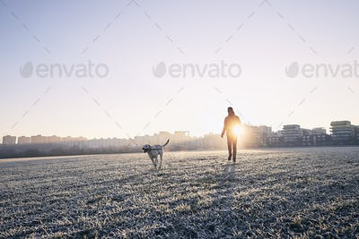 Frosty morning with dog