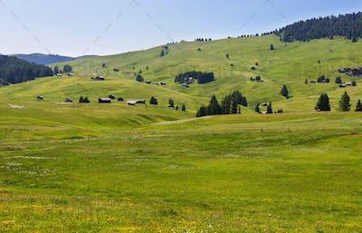 Alpe di Siusi or Seiser Alm, Dolomites Alps , Italy