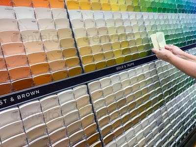 Customer Views Paint Swatches In Paint Store at Colourful Sample Rack