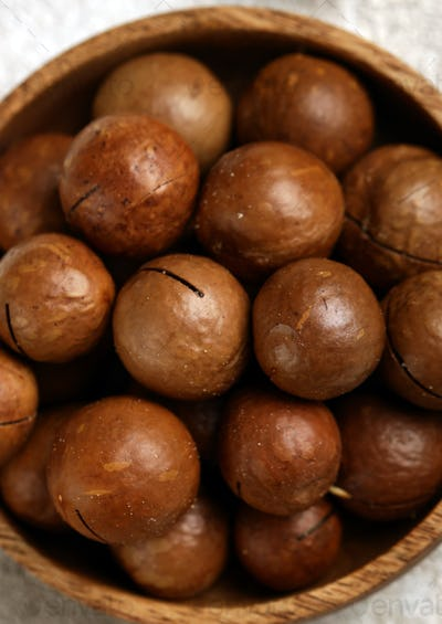 Macadam Nuts in a Bowl