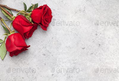 Valentines day card with rose flowers