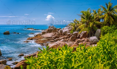 La Digue, Seychelles. Tropical exotic paradise like beach with granite boulders and coconut palm