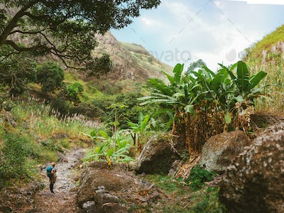 Female hiker take a rest in wondrous lush canyon full of exotic vegetation. Plenty of tropical fruit