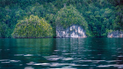 Rocks overgrown with Palmtrees in Hidden Bay on Gam Island near Kabui and Passage. West Papuan, Raja